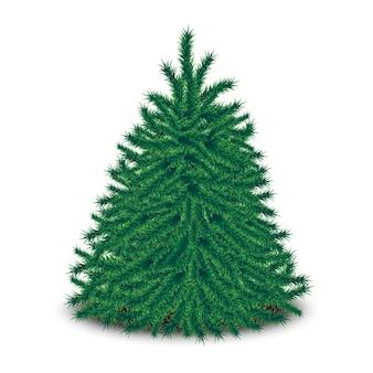 Dichtbegroeide onopgesmukte kerstboom geïsoleerd op een witte achtergrond.