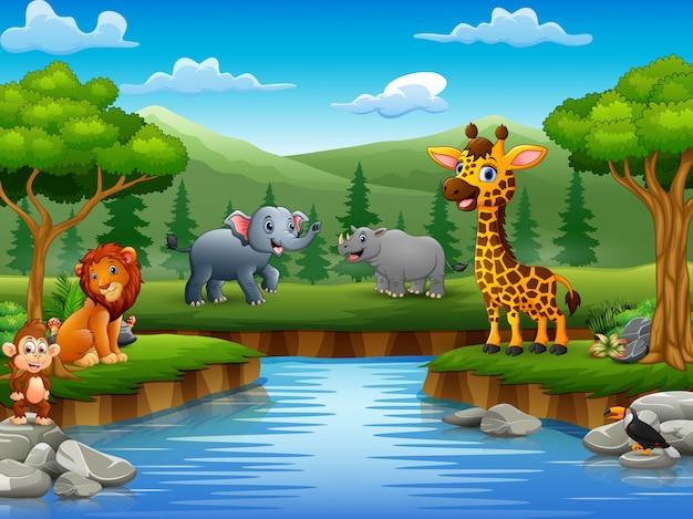 Dieren cartoon genieten van de natuur door de rivier