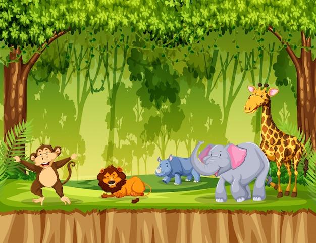 Dieren in de jungle scène