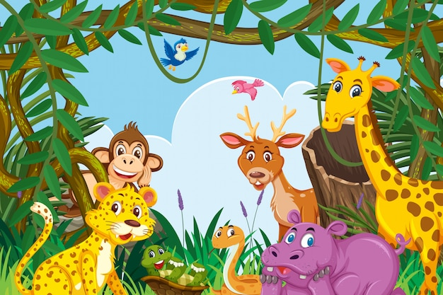 Dieren in de jungle