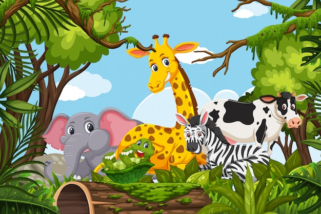 Dieren in jungle scene