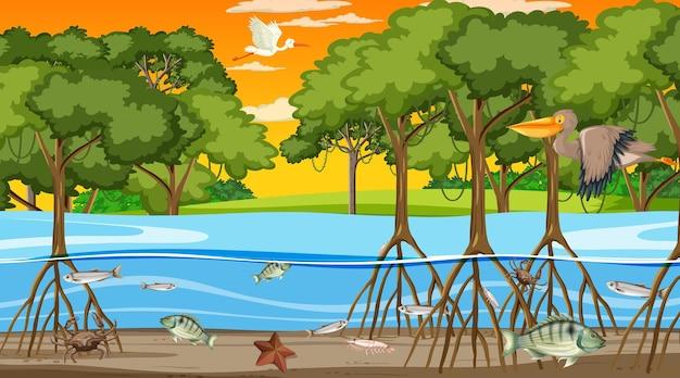 Dieren leven in mangrovebos bij zonsondergangtijdscène