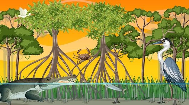 Dieren leven in mangrovebos bij zonsondergangtijdscène Gratis Vector