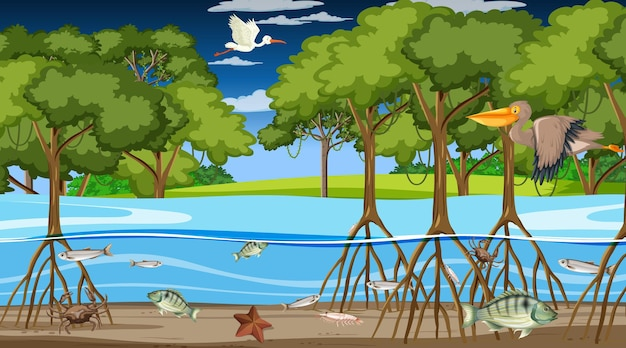 Dieren leven 's nachts in mangrovebossen