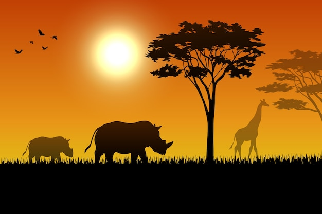 Dieren silhouet in zonsondergang op savanah