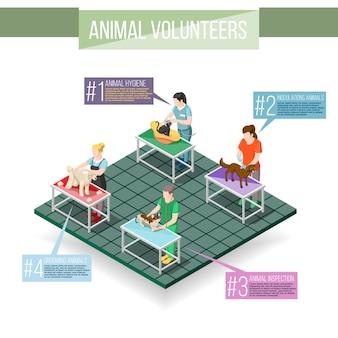 Dieren vrijwilligers isometrische infographics