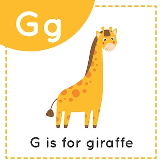 Dierenalfabet flashcard voor kinderen. leren letter g. g is voor giraf.