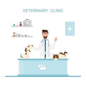 Dierenarts en arts met huisdier op teller in dierenartskliniek.