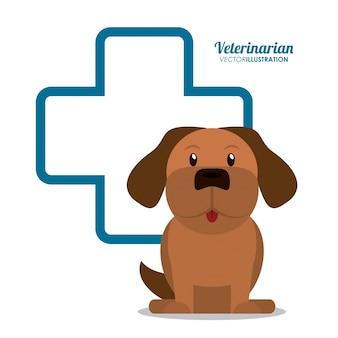 Dierenarts huisdier kliniek pictogram