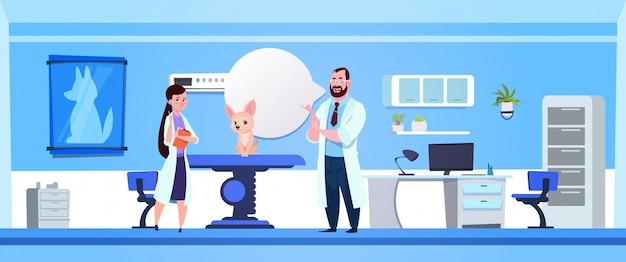 Dierenartsartsen die hond in het bureau van het kliniekbureau veterinaire concept onderzoeken