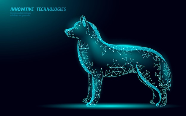 Dierenkliniek hond huisdier staan. laag poly veelhoekige 3d hond silhouet metgezel. dierlijke medische centrum illustratie.