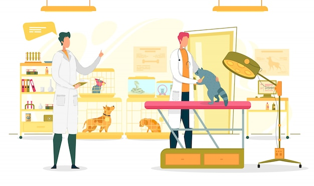 Dierenkliniek onderzoek kamer met artsen.