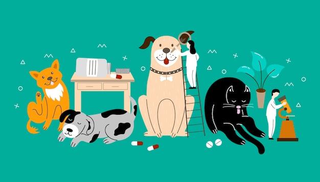 Dierenkliniek, veterinaire dermatologie