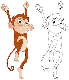 Dierenoverzicht voor grappige aap