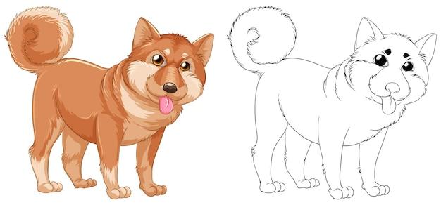 Dierenoverzicht voor shiba-hond
