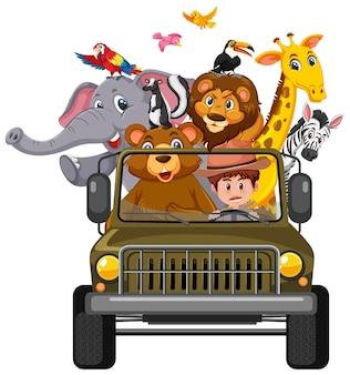 Dierentuinconcept met wilde dieren in de auto die op witte achtergrond wordt geïsoleerd
