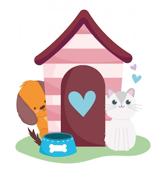 Dierenwinkel, schattige hond en kat met huis en kom dierlijk huiselijk beeldverhaal