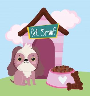 Dierenwinkel, schattige hond zit met koekjesvoedsel en huisdier huiselijk beeldverhaal
