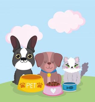 Dierenwinkel, schattige kat en honden zitten met voedsel in kommen dierlijke binnenlandse cartoon