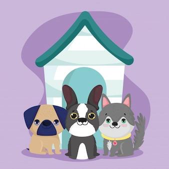 Dierenwinkel, schattige kleine puppy's zitten met houten huis dierlijke binnenlandse cartoon
