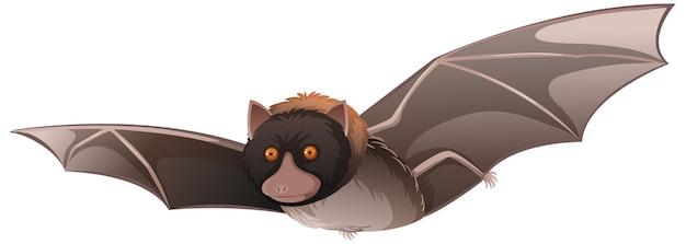 Dierlijk beeldverhaalkarakter van een vleermuis op witte achtergrond