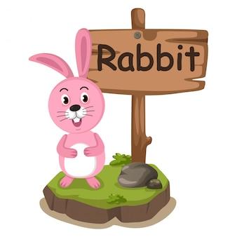 Dierlijke alfabet letter r voor konijn