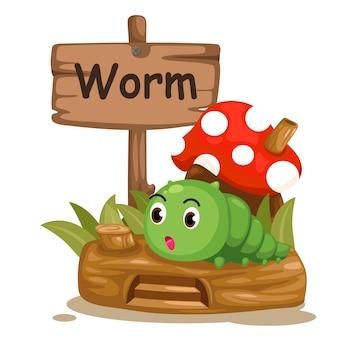 Dierlijke alfabet letter w voor worm