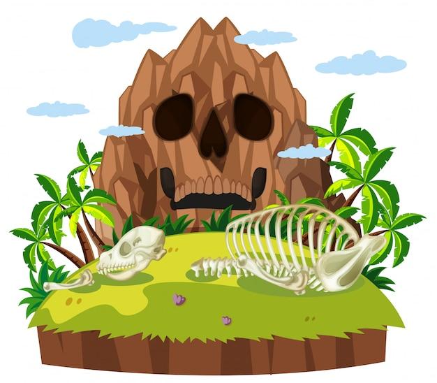 Dierlijke schedel op eiland