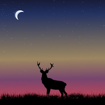 Dierlijke silhouet achtergrond