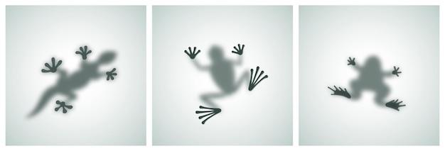 Diffuse reptielen silhouetten schaduw abstracte vector afbeeldingen set pad kikker hagedis gekko of kameleon s...