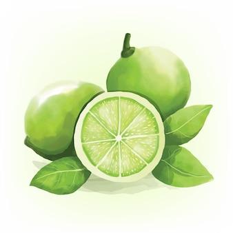Digitaal geschilderde aquarel groene kalk schilderij