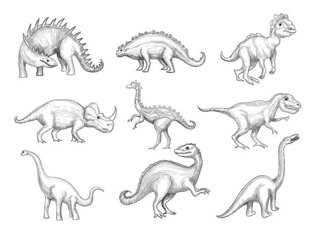 Dinosaurussen collectie. uitsterven wilde plantenetende boze dieren in paleontologie leeftijden vector schets getekende afbeeldingen. schets herbivore en prehistorische reptielenillustratie