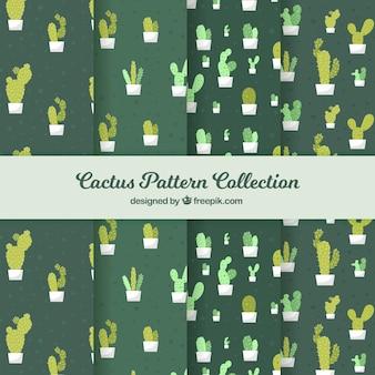 Diverse groene cactuspatronen in vlakke vormgeving