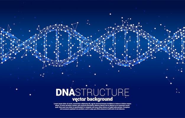 Dna genetische structuur van puntverbindingslijnveelhoek. achtergrond concept voor biotechnologie en biologie wetenschappelijke.