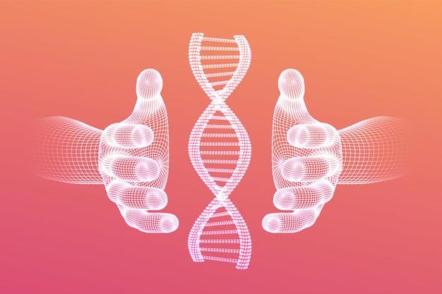 Dna-sequentie in handen. wireframe dna-codemoleculen structureren mesh.
