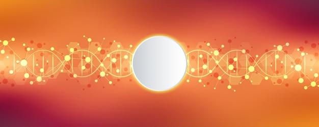 Dna-streng en moleculaire structuur. genetische manipulatie of laboratoriumonderzoek.