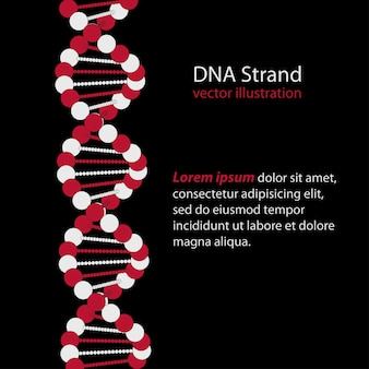 Dna-streng, genetische code
