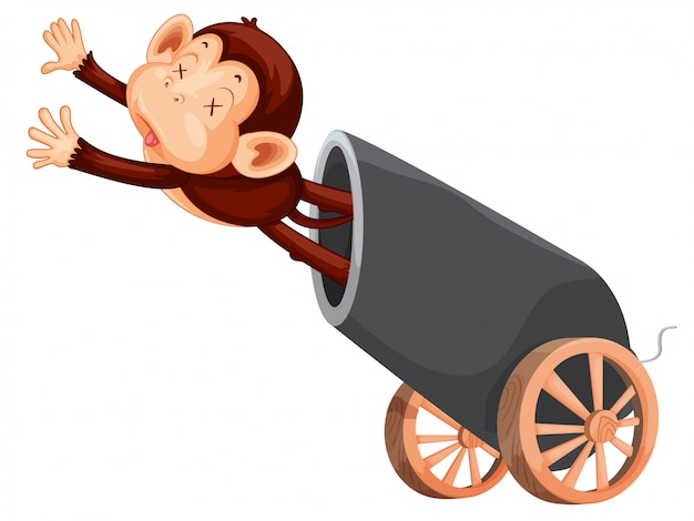 Dode aap en kanon