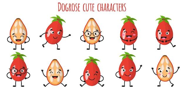 Dogrose fruit schattige grappige vrolijke karakters met verschillende poses en emoties. natuurlijke vitamine antioxidant detox voedsel collectie. cartoon geïsoleerde illustratie.