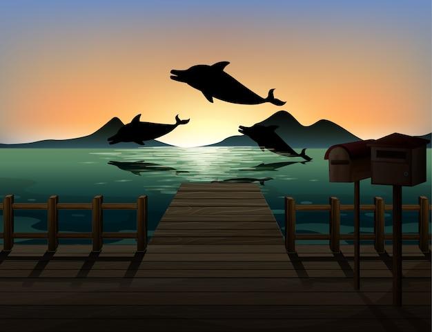 Dolfijn in natuur scène silhouet