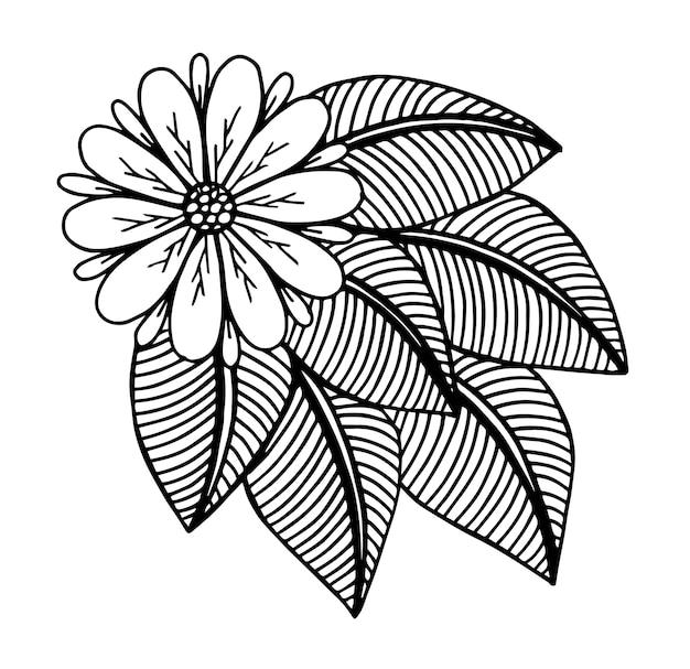 Doodle bloemenpatroon in zwart en wit