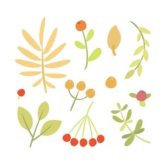 Doodle planten illustratie