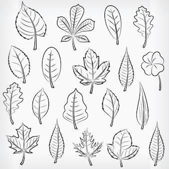 Doodle tropische plant laat hand tekenen schets