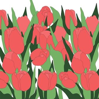 Doodle tulpen achtergrond geïsoleerde vectorillustratie. floral botanische bloem. natuur landschap.