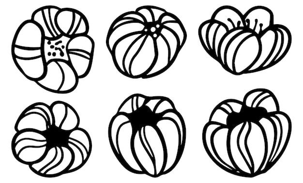 Doodles collectie van abstracte boom bloesem bloemen. hand getekende vectorillustraties. zwarte omtrek cliparts geïsoleerd op wit. eenvoudige botanische elementen voor design.