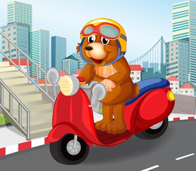 Draag berijdende autoped in stedelijke stad