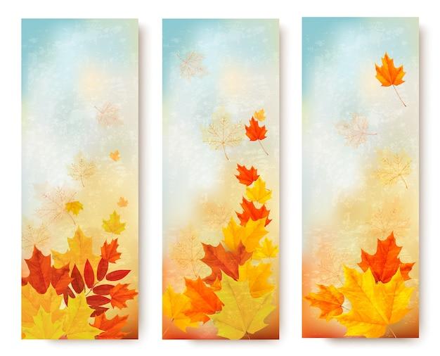 Drie abstracte de herfstbanners met kleurenbladeren.