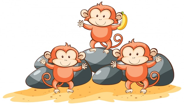 Drie apen op een witte achtergrond