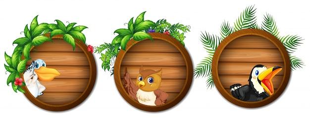 Drie houten planken met wilde vogels