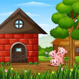 Drie kleine varkens die op boerderij spelen